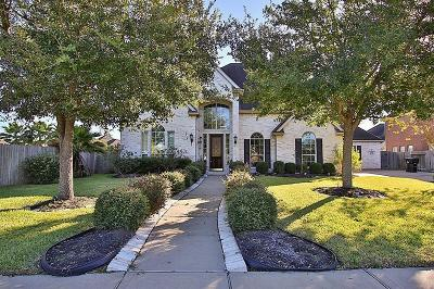 Sugar Land Single Family Home For Sale: 10903 Newport Bridge Lane