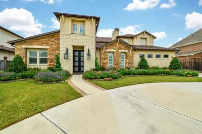 Katy Single Family Home For Sale: 3002 Brighton Sky