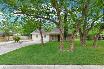 Single Family Home For Sale: 18610 Anne Drive