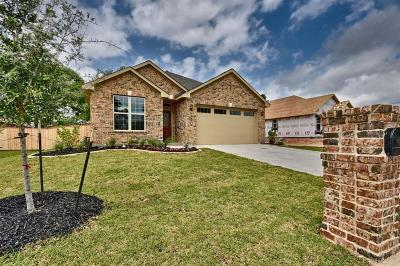 Bellville Single Family Home For Sale: 42 Briarwood Lane