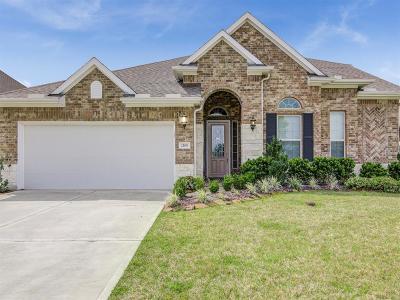 League City Single Family Home For Sale: 2108 Naron Lane