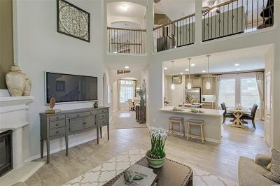 Single Family Home For Sale: 313 Serenata Woods Trail