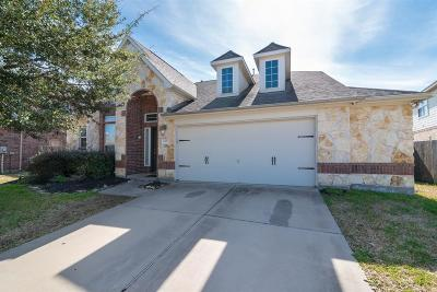 Pearland Single Family Home For Sale: 12004 Springview Lane
