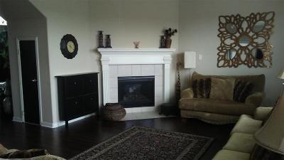 Katy Single Family Home For Sale: 4110 Barossa Valley Lane