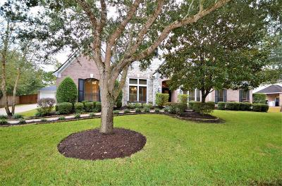 Friendswood Single Family Home For Sale: 505 Shadywood Drive
