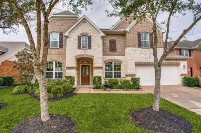 Pearland Single Family Home For Sale: 3006 Willow Brook Court