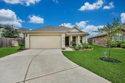 Houston Single Family Home For Sale: 11226 Royal Sands Court