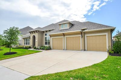 Pearland Single Family Home For Sale: 3401 Leafstone Lane