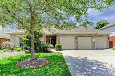 Houston Single Family Home For Sale: 14415 Castle Cove Lane