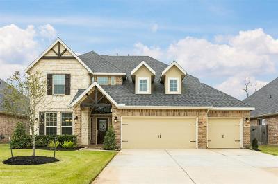 Rosenberg Single Family Home For Sale: 9402 Wheatfield Lane