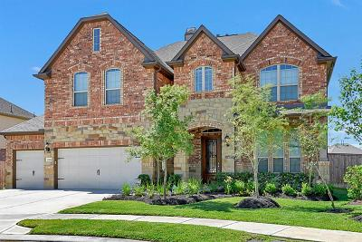Tomball Single Family Home For Sale: 18506 Hardy Trace Drive