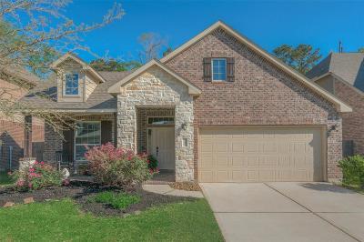 Montgomery Single Family Home For Sale: 182 Jaxxon Pointe Drive