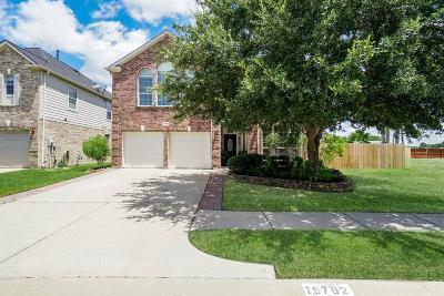 Houston Single Family Home For Sale: 19702 Wren Forest Lane