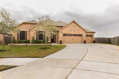 Katy Single Family Home For Sale: 2902 Katy Town Ln. Lane