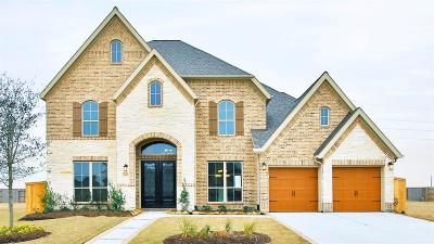 Katy Single Family Home For Sale: 6419 Hedge Sparrow Lane