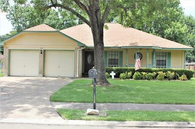 Lake Jackson Single Family Home For Sale: 320 Raintree Lane