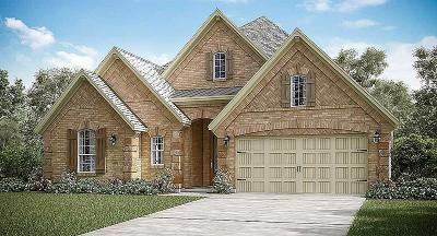 Friendswood Single Family Home For Sale: 2328 Shallow Creek Lane