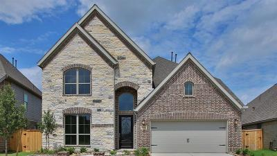 Single Family Home For Sale: 15719 Rock Squirrel Drive
