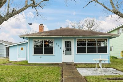 Brazoria Single Family Home For Sale: 5326 County Road 868d