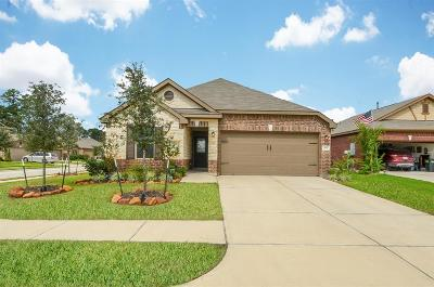 Porter Single Family Home For Sale: 20803 Mayford Brook Court