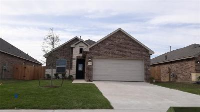 Texas City Single Family Home For Sale: 8725 Explorer Drive