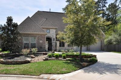 The Woodlands Single Family Home For Sale: 79 Lake Voyageur Drive