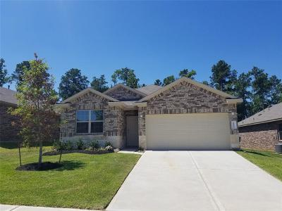 Conroe Single Family Home For Sale: 11383 Dawn Beach