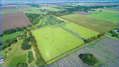 Fort Bend County Farm & Ranch For Sale: 7601 Vojt Road