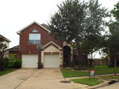 Houston Single Family Home For Sale: 16627 Barrett Post Lane