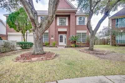 League City Single Family Home For Sale: 2103 Teal Bay Bend Lane