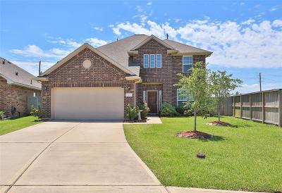 League City Single Family Home For Sale: 3029 Aguila Creek Court