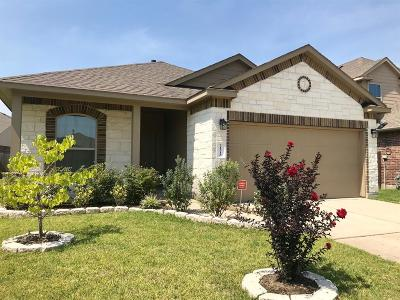 Porter Single Family Home For Sale: 21518 N Cotton Valley Lane N