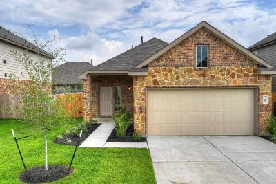 Single Family Home For Sale: 2206 Spring Hollow Drive