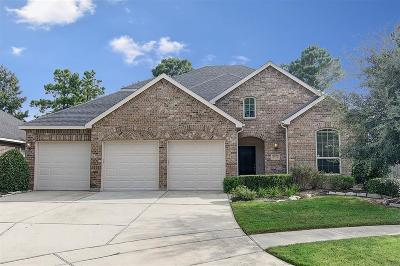 Conroe Single Family Home For Sale: 8206 Horsetail Court