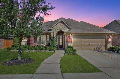 Harris County Single Family Home For Sale: 10510 Star Thistle Court
