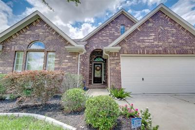 Rosharon Single Family Home For Sale: 9426 Bronze Shore Drive