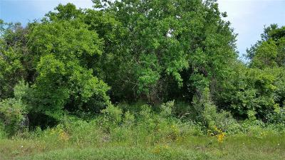 Brazoria Residential Lots & Land For Sale: Lot 101 N Belt Drive