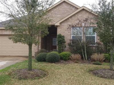 Missouri City Single Family Home For Sale: 2714 Palm Harbour Drive Drive