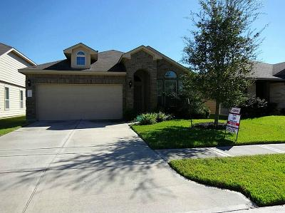 Houston Single Family Home For Sale: 13915 Long Meadow Drive