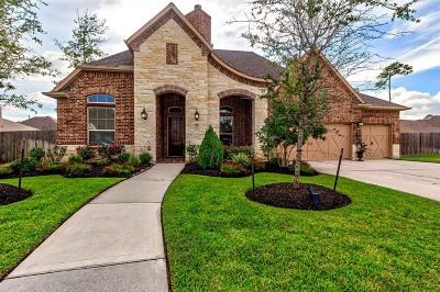 Houston Single Family Home For Sale: 18011 Calavatra Lane