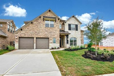 Single Family Home For Sale: 8123 Messina Mount Drive