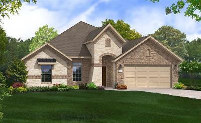 League City Single Family Home For Sale: 3054 Bellflower Pass Lane