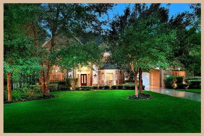 Conroe Single Family Home For Sale: 13248 Autumn Mist Lane