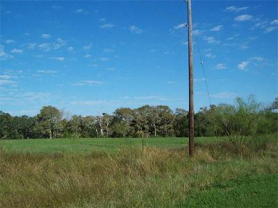 Blessing Residential Lots & Land For Sale: 9 Tanglewood Drive
