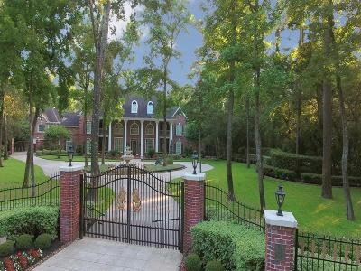 The Woodlands Single Family Home For Sale: 30 S Tranquil Path