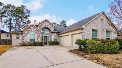 Humble Single Family Home For Sale: 17611 Fall River Pass Court
