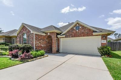 Tomball Single Family Home For Sale: 18919 Pinewood Point Lane