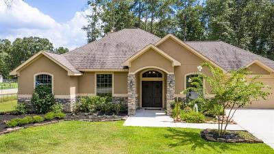 Single Family Home For Sale: 27556 Rio Blanco Drive