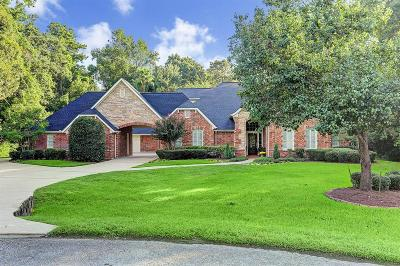 Conroe Single Family Home For Sale: 13241 Chappel Wood Lane