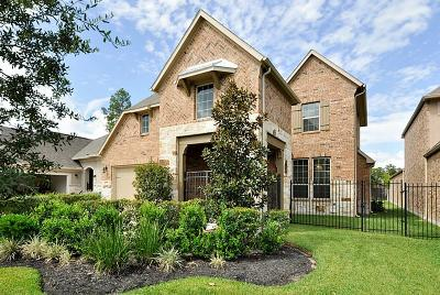 Tomball Single Family Home For Sale: 1719 Pine Plains Drive